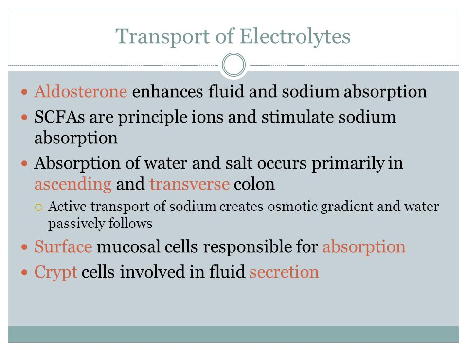 Transport of Electrolytes Aldosterone enhances fluid and sodium absorption SCFAs are principle ions and stimulate sodium absorption Absorption of wate