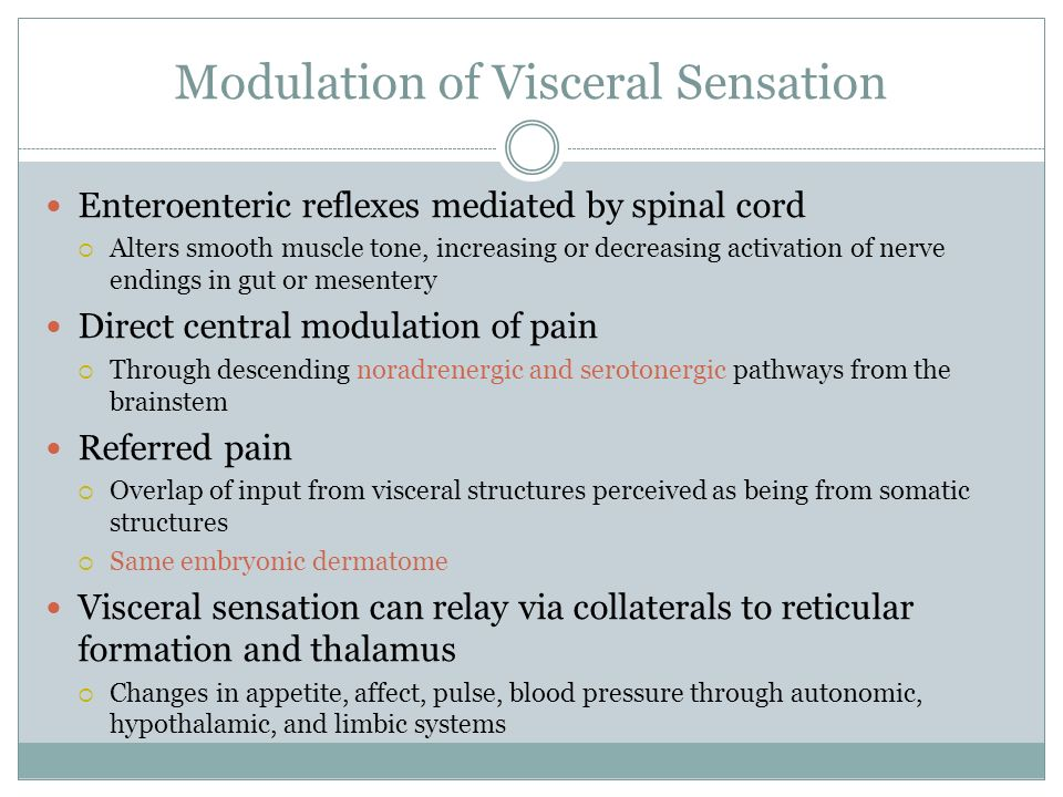 Modulation of Visceral Sensation Enteroenteric reflexes mediated by spinal cord Alters smooth muscle tone, increasing or decreasing activation of nerv