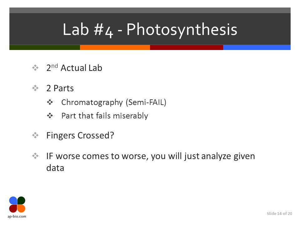 Slide 14 of 20 Lab #4 - Photosynthesis 2 nd Actual Lab 2 Parts Chromatography (Semi-FAIL) Part that fails miserably Fingers Crossed? IF worse comes to