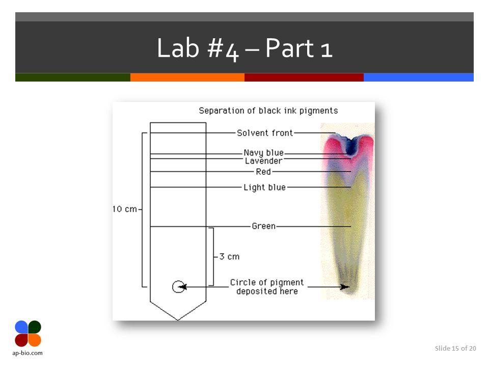 Slide 15 of 20 Lab #4 – Part 1