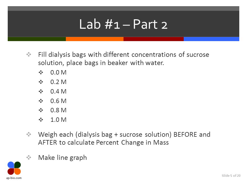 Slide 5 of 20 Lab #1 – Part 2 Fill dialysis bags with different concentrations of sucrose solution, place bags in beaker with water. 0.0 M 0.2 M 0.4 M