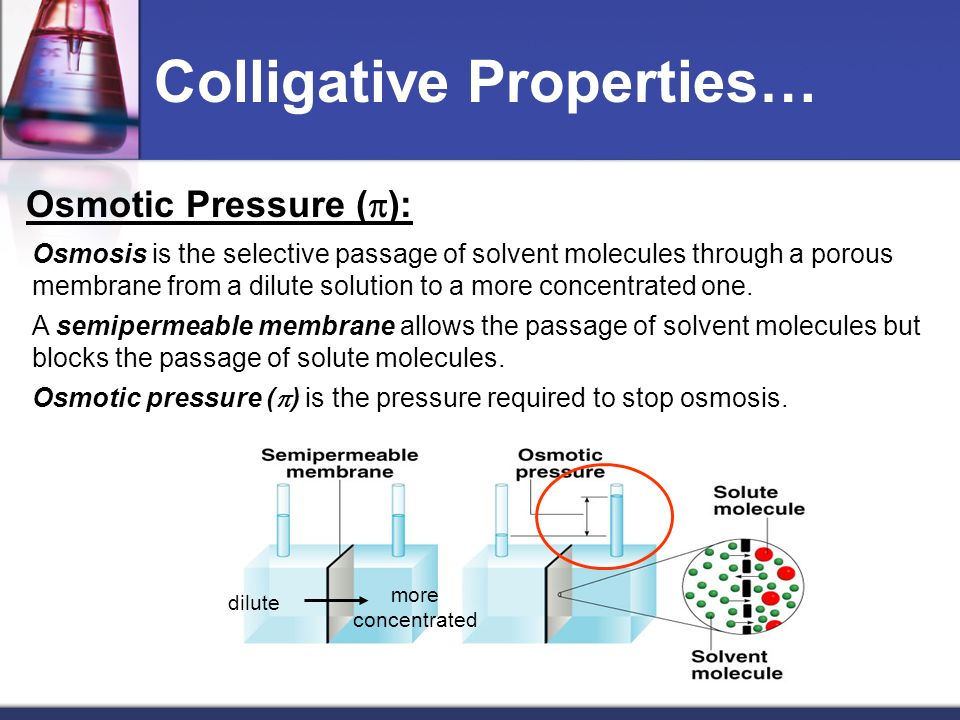 Colligative Properties… Osmotic Pressure ( ): Osmosis is the selective passage of solvent molecules through a porous membrane from a dilute solution t