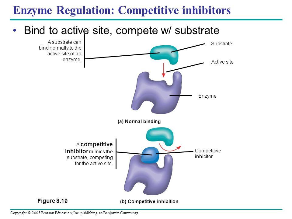 Copyright © 2005 Pearson Education, Inc. publishing as Benjamin Cummings Enzyme Regulation Regulation of enzyme activity controls metabolism Cells met