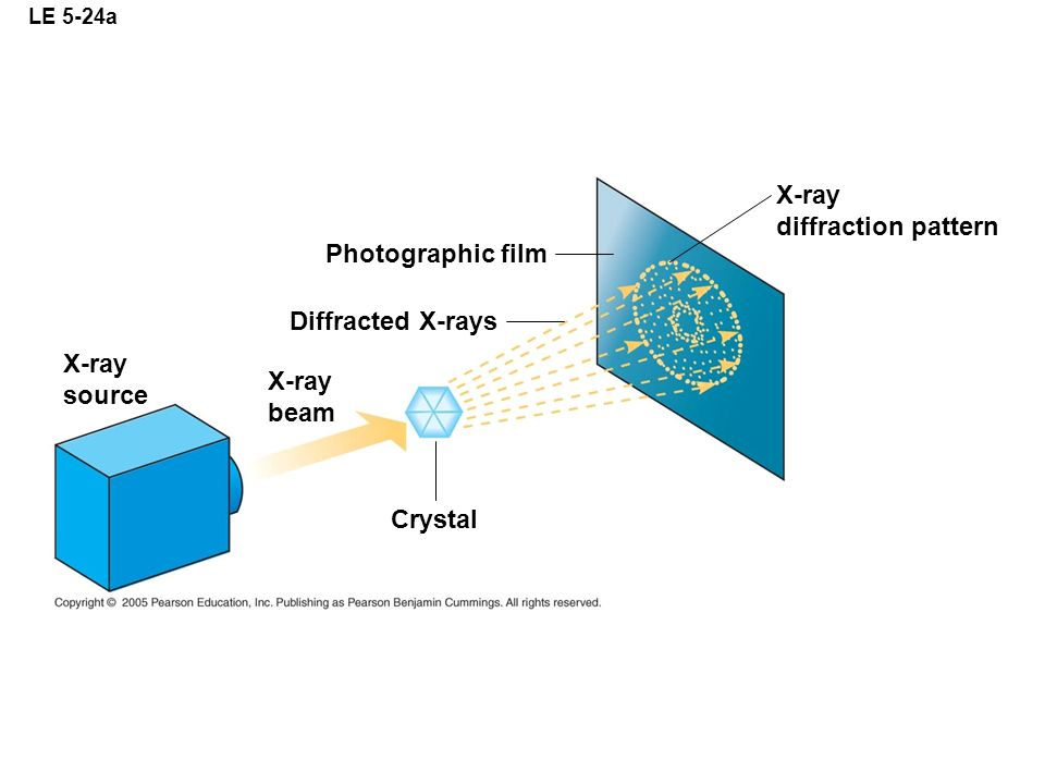 LE 5-24a Photographic film Diffracted X-rays X-ray source X-ray beam X-ray diffraction pattern Crystal