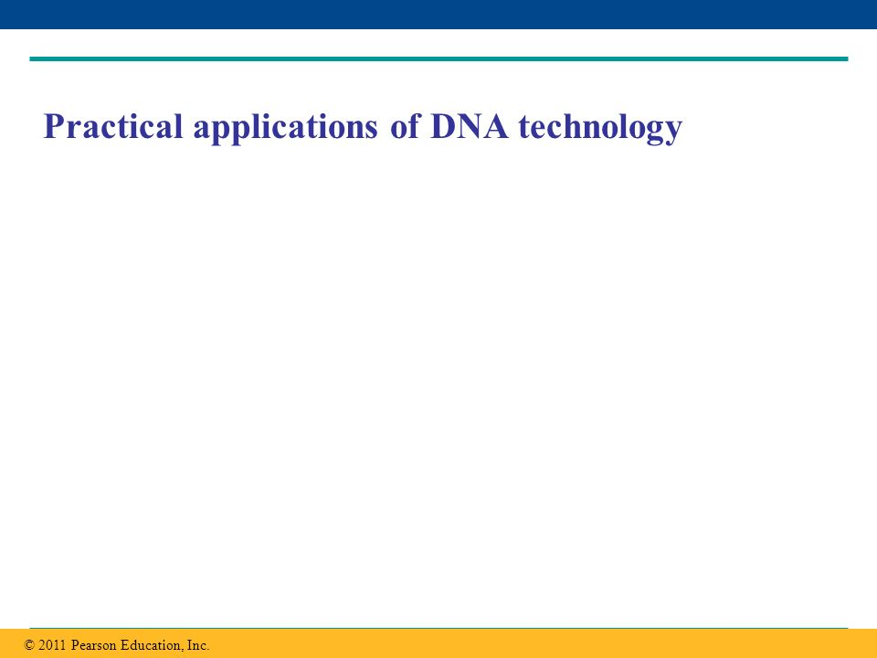 Copyright © 2005 Pearson Education, Inc. publishing as Benjamin Cummings Practical applications of DNA technology © 2011 Pearson Education, Inc.