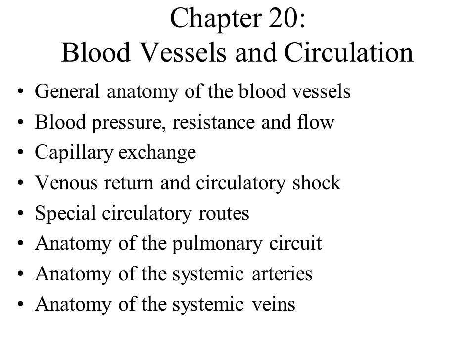 Chapter 20: Blood Vessels and Circulation General anatomy of the blood vessels Blood pressure, resistance and flow Capillary exchange Venous return an