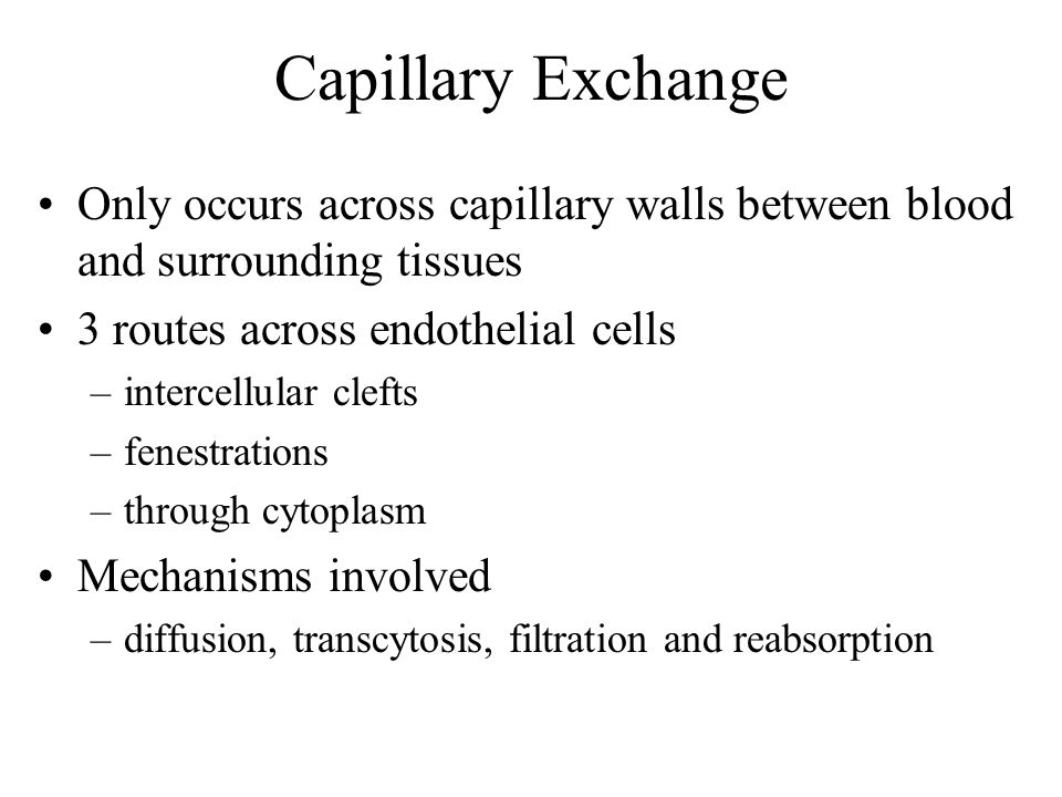 Capillary Exchange Only occurs across capillary walls between blood and surrounding tissues 3 routes across endothelial cells –intercellular clefts –f