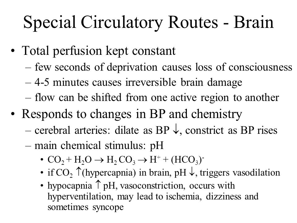 Special Circulatory Routes - Brain Total perfusion kept constant –few seconds of deprivation causes loss of consciousness –4-5 minutes causes irrevers