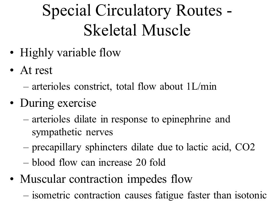 Special Circulatory Routes - Skeletal Muscle Highly variable flow At rest –arterioles constrict, total flow about 1L/min During exercise –arterioles d