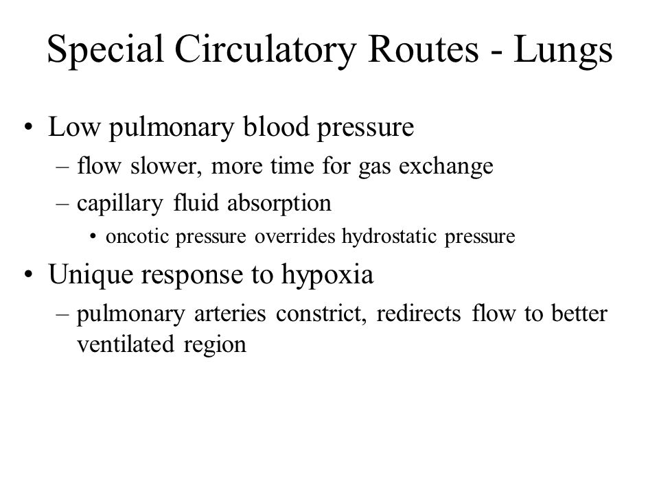 Special Circulatory Routes - Lungs Low pulmonary blood pressure –flow slower, more time for gas exchange –capillary fluid absorption oncotic pressure