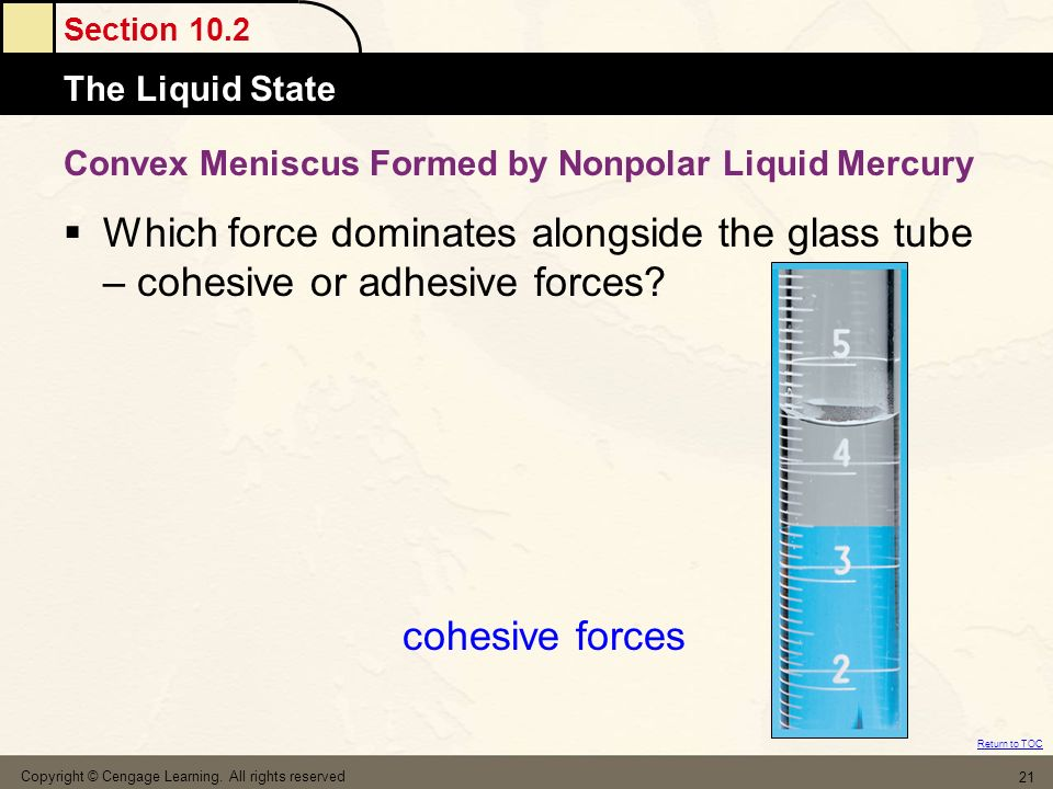 Section 10.2 Atomic MassesThe Liquid State Return to TOC Copyright © Cengage Learning.