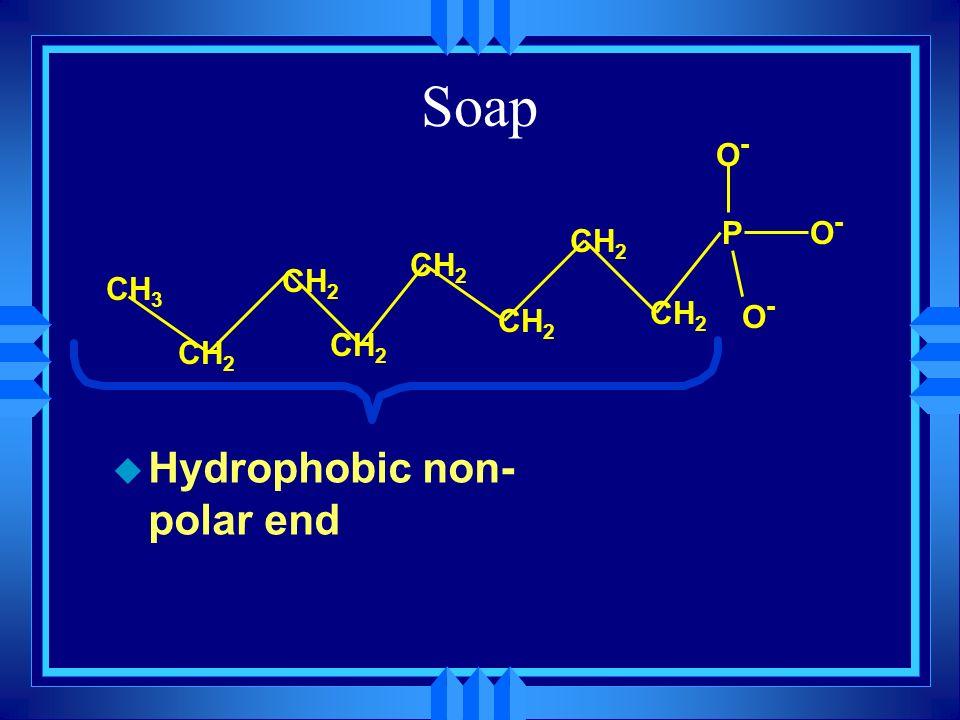 Soap u Hydrophobic non- polar end PO-O- CH 3 CH 2 O-O- O-O-