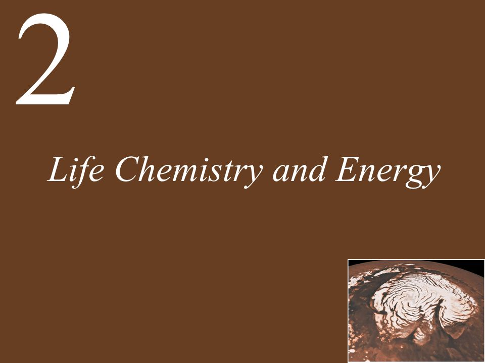 Life Chemistry and Energy 2