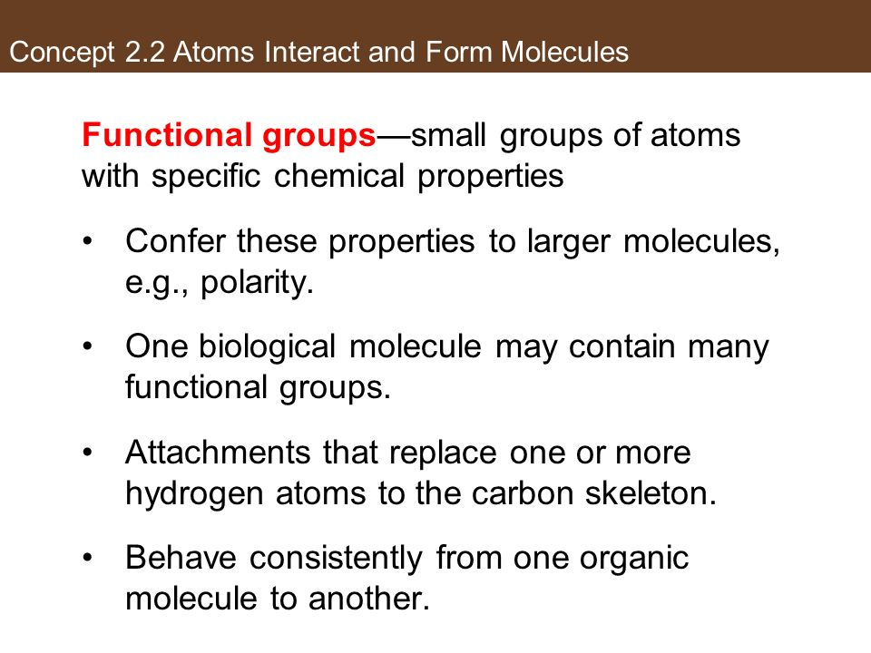 Concept 2.2 Atoms Interact and Form Molecules Functional groupssmall groups of atoms with specific chemical properties Confer these properties to larg