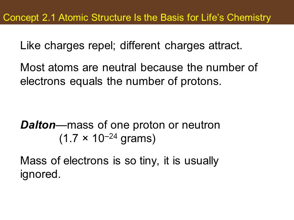 Concept 2.1 Atomic Structure Is the Basis for Lifes Chemistry Like charges repel; different charges attract. Most atoms are neutral because the number