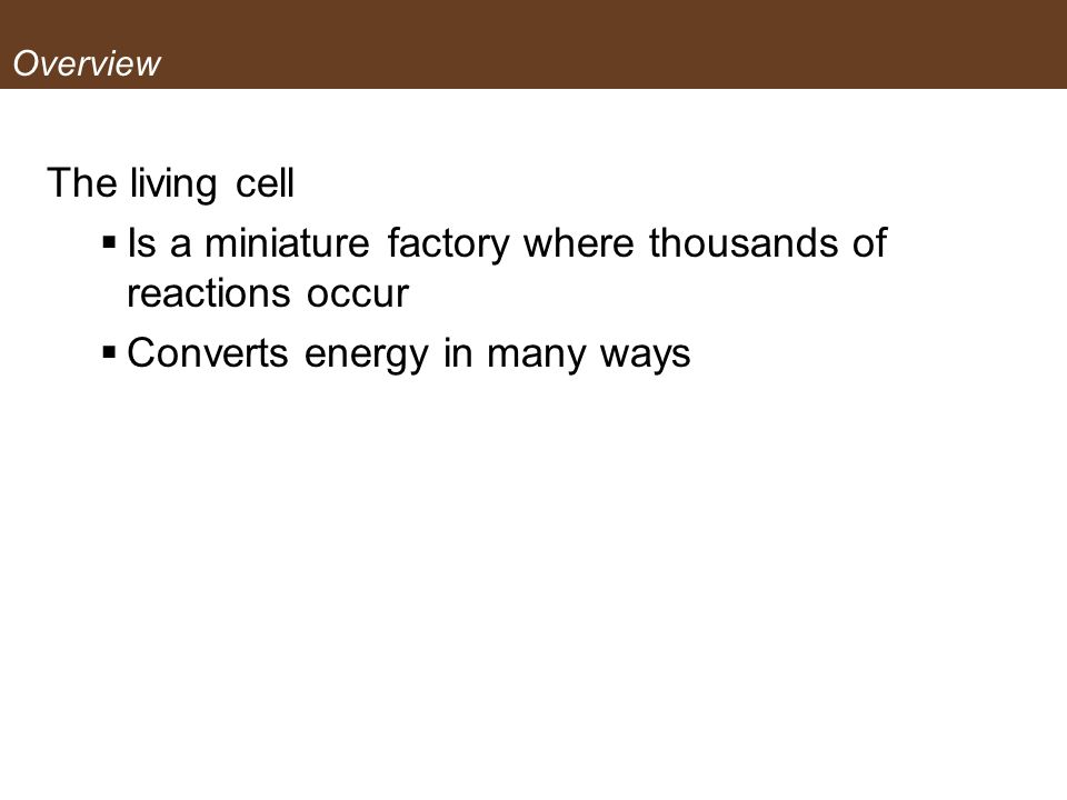 Overview The living cell Is a miniature factory where thousands of reactions occur Converts energy in many ways