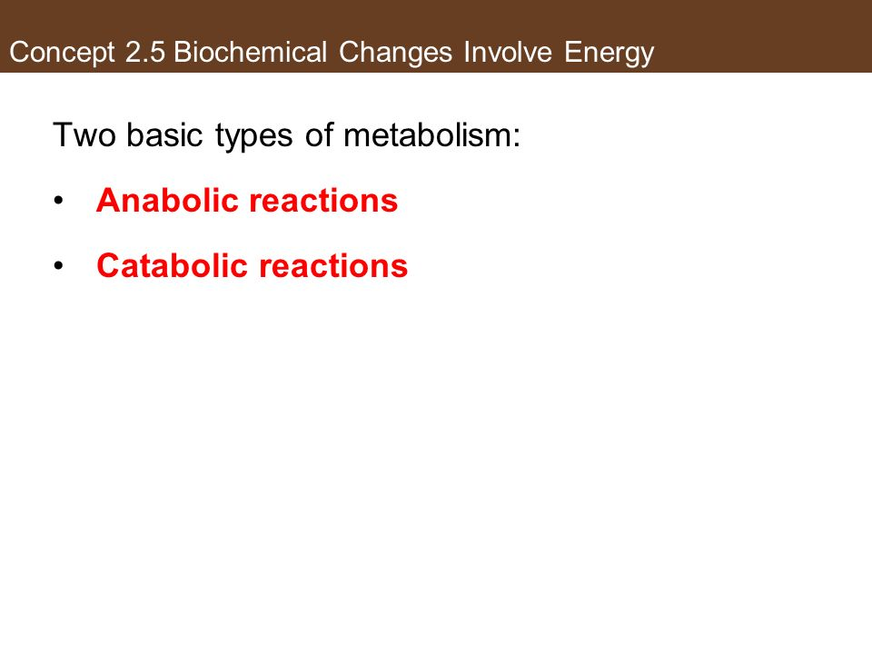 Concept 2.5 Biochemical Changes Involve Energy Two basic types of metabolism: Anabolic reactions Catabolic reactions