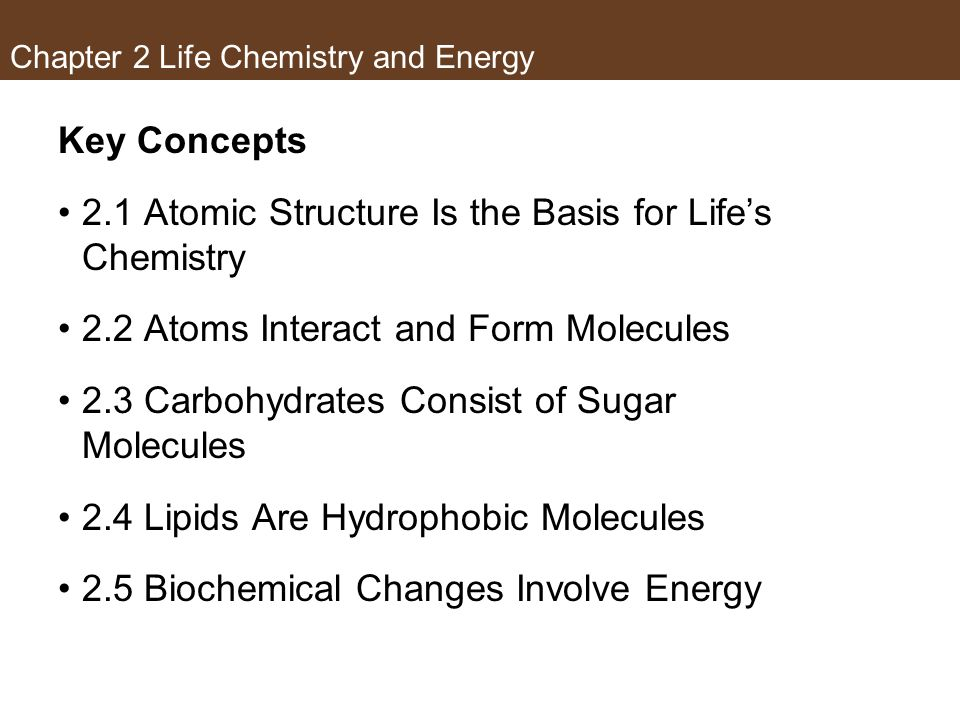 Concept 2.5 Biochemical Changes Involve Energy If a chemical reaction increases entropy, its products are more disordered or random than its reactants.