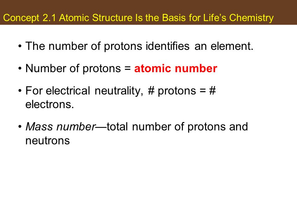 Concept 2.1 Atomic Structure Is the Basis for Lifes Chemistry The number of protons identifies an element. Number of protons = atomic number For elect