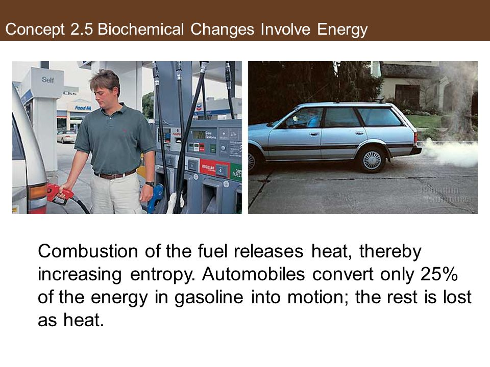 The Second Law of Thermodynamics Combustion of the fuel releases heat, thereby increasing entropy. Automobiles convert only 25% of the energy in gasol