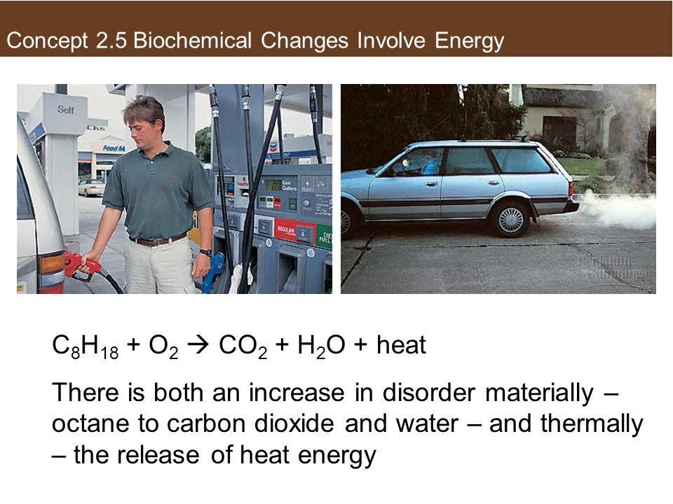 The Second Law of Thermodynamics C 8 H 18 + O 2 CO 2 + H 2 O + heat There is both an increase in disorder materially – octane to carbon dioxide and wa