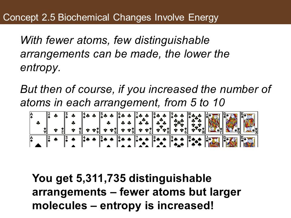 Concept 2.5 Biochemical Changes Involve Energy With fewer atoms, few distinguishable arrangements can be made, the lower the entropy. But then of cour