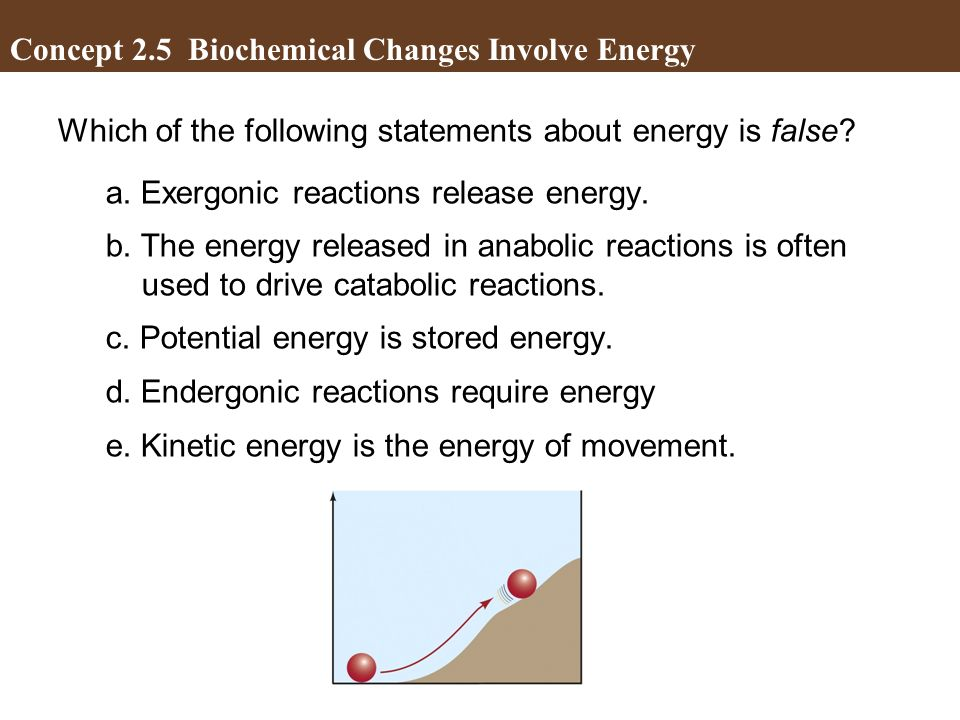 Which of the following statements about energy is false? a. Exergonic reactions release energy. b. The energy released in anabolic reactions is often