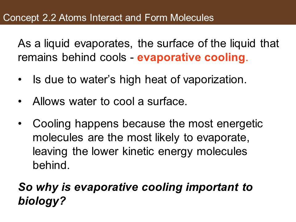Concept 2.2 Atoms Interact and Form Molecules As a liquid evaporates, the surface of the liquid that remains behind cools - evaporative cooling. Is du
