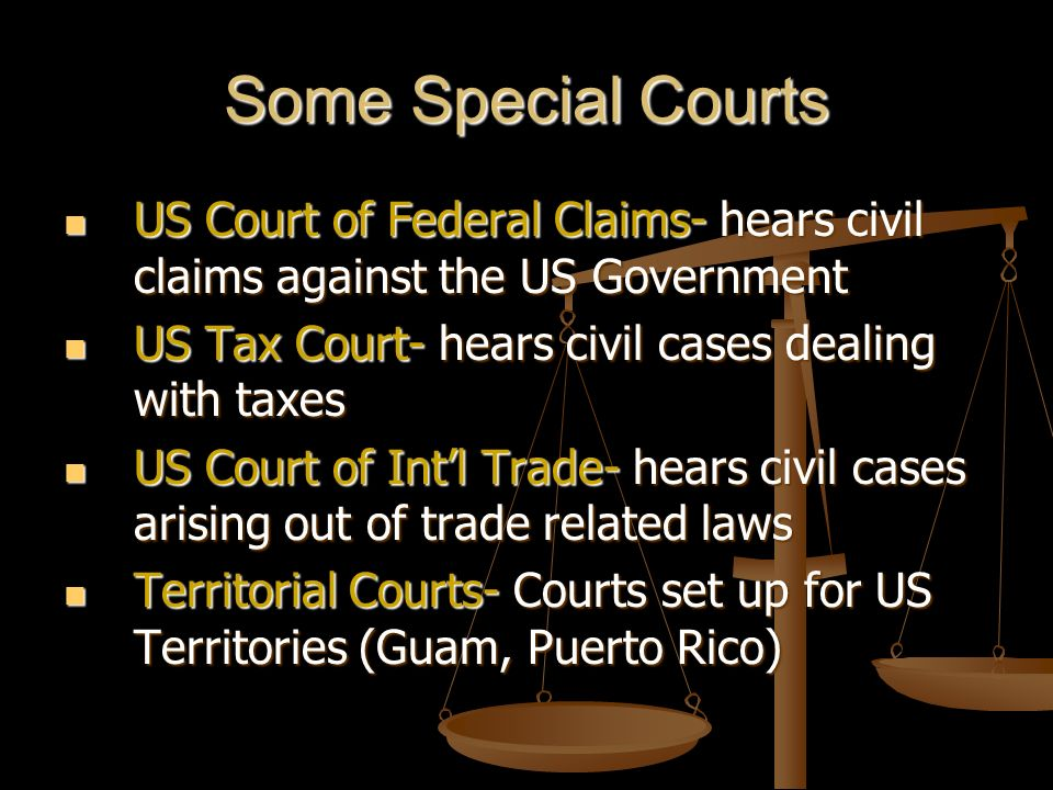 Some Special Courts US Court of Federal Claims- hears civil claims against the US Government US Court of Federal Claims- hears civil claims against th