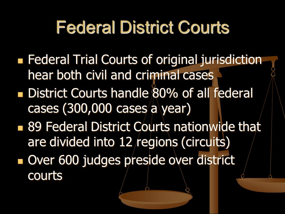 Federal Circuit Court Created by Congress in 1891 to reduce the work load of the Supreme Court Created by Congress in 1891 to reduce the work load of the Supreme Court Only has appellate jurisdiction Only has appellate jurisdiction They hear 55,000 cases a year They hear 55,000 cases a year Usually hear appeals from District Courts Usually hear appeals from District Courts 12 of these courts nationwide 12 of these courts nationwide Approximately 180 judges Approximately 180 judges Judges usually hear cases in panels of three (en banc) Judges usually hear cases in panels of three (en banc)