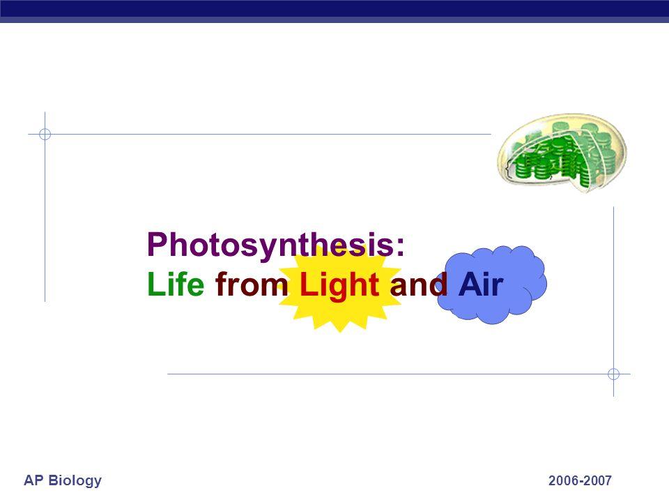 AP Biology 2006-2007