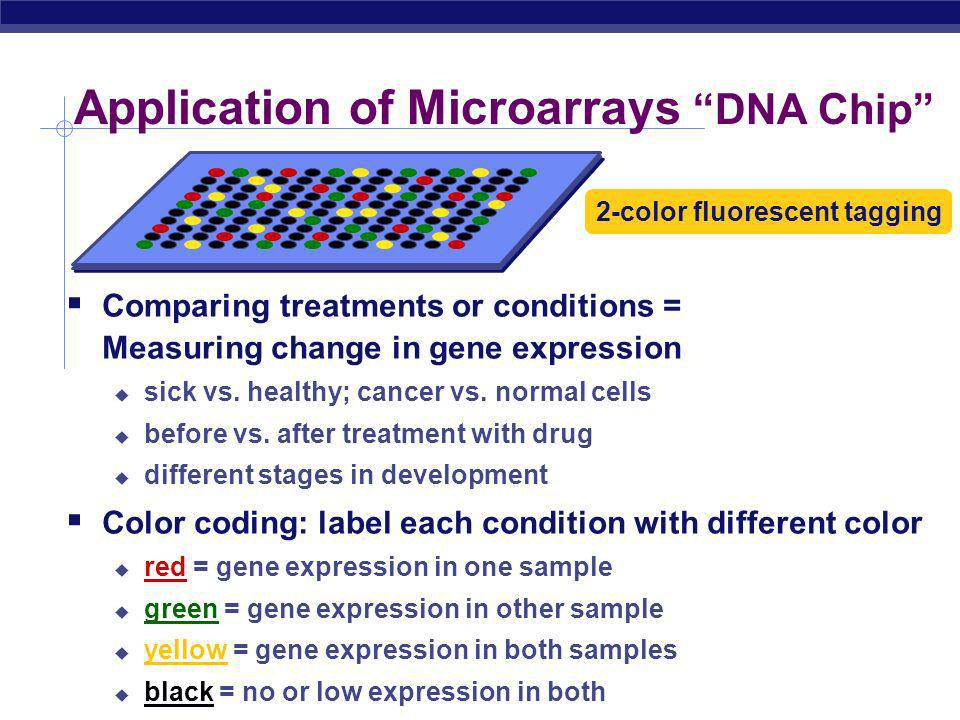 AP Biology Microarrays Labeled cDNA hybridizes with DNA on slide each yellow spot = gene matched to mRNA each yellow spot = expressed gene slide with