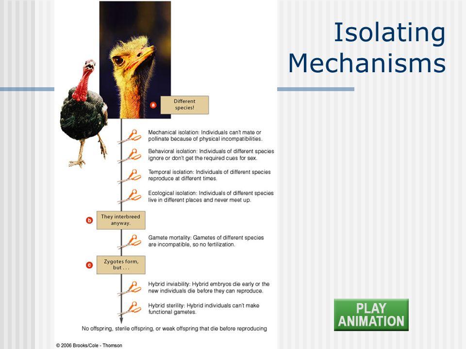 Chapter 19 Isolating Mechanisms
