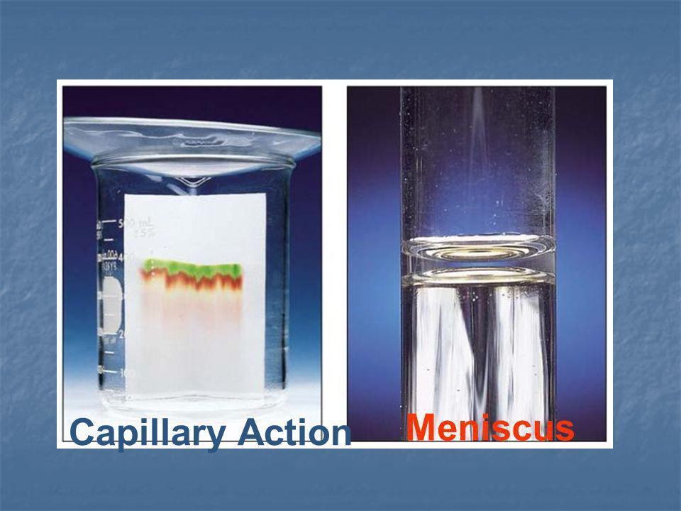 Capillary Action Meniscus