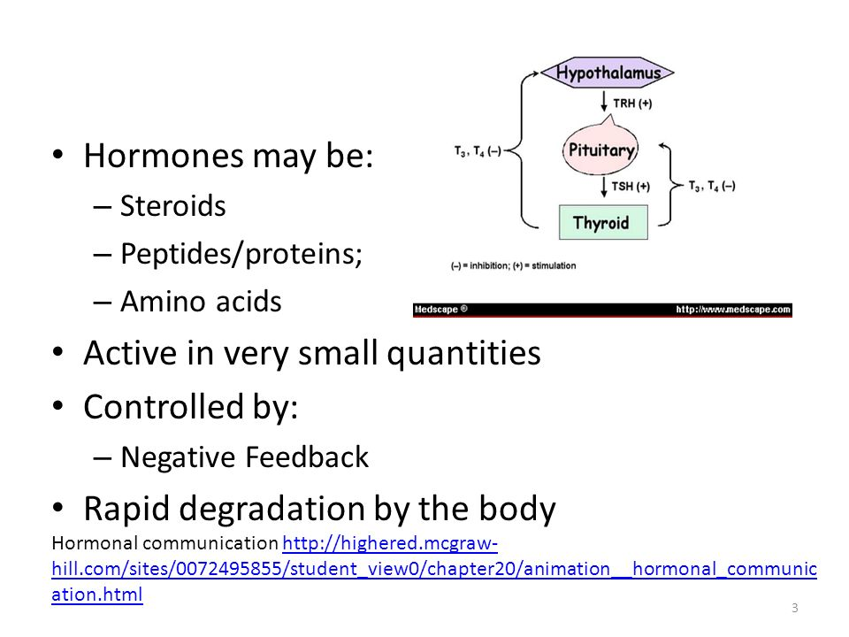 Hormones may be: – Steroids – Peptides/proteins; – Amino acids Active in very small quantities Controlled by: – Negative Feedback Rapid degradation by