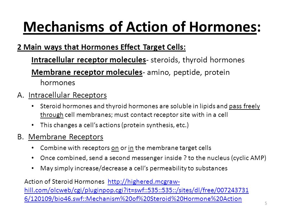 Mechanisms of Action of Hormones: 2 Main ways that Hormones Effect Target Cells: Intracellular receptor molecules- steroids, thyroid hormones Membrane