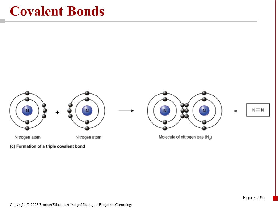 Copyright © 2003 Pearson Education, Inc. publishing as Benjamin Cummings Covalent Bonds Figure 2.6c