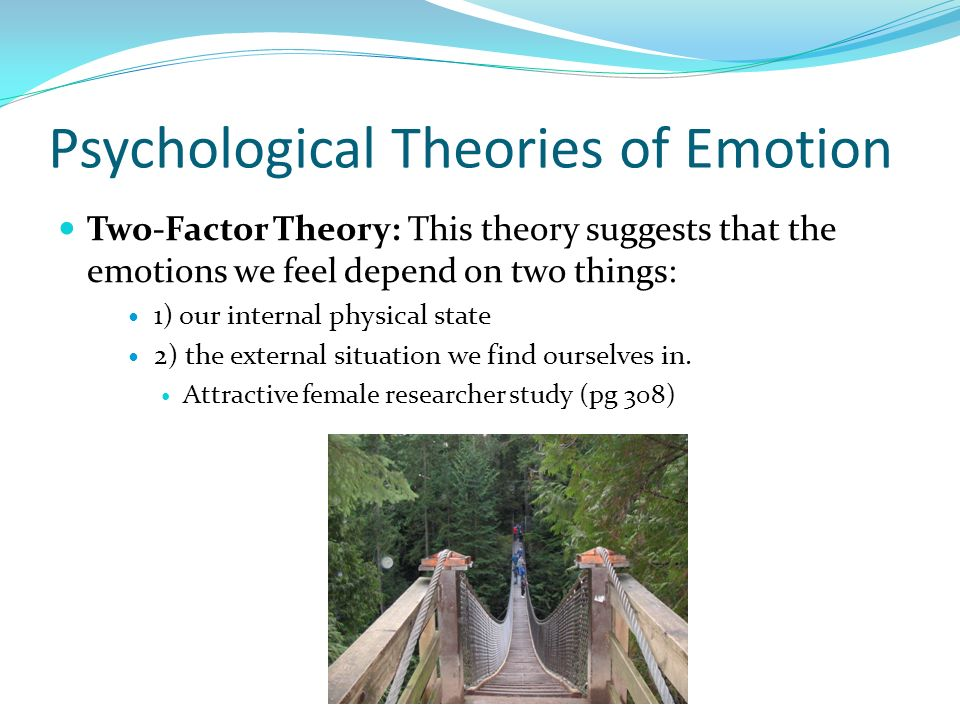 Psychological Theories of Emotion Two-Factor Theory: This theory suggests that the emotions we feel depend on two things: 1) our internal physical sta