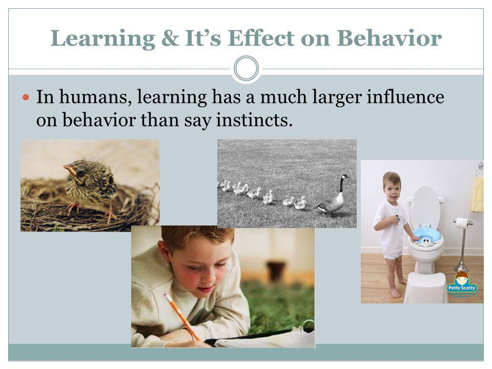 Learning & Its Effect on Behavior In humans, learning has a much larger influence on behavior than say instincts.