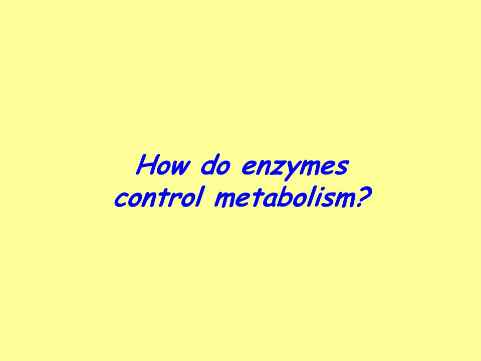 How do enzymes control metabolism?