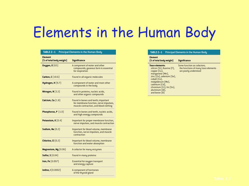 Elements in the Human Body Table 2–1