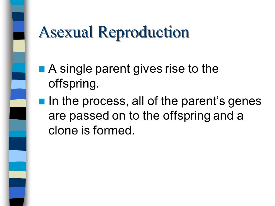 Asexual Reproduction A single parent gives rise to the offspring. In the process, all of the parents genes are passed on to the offspring and a clone