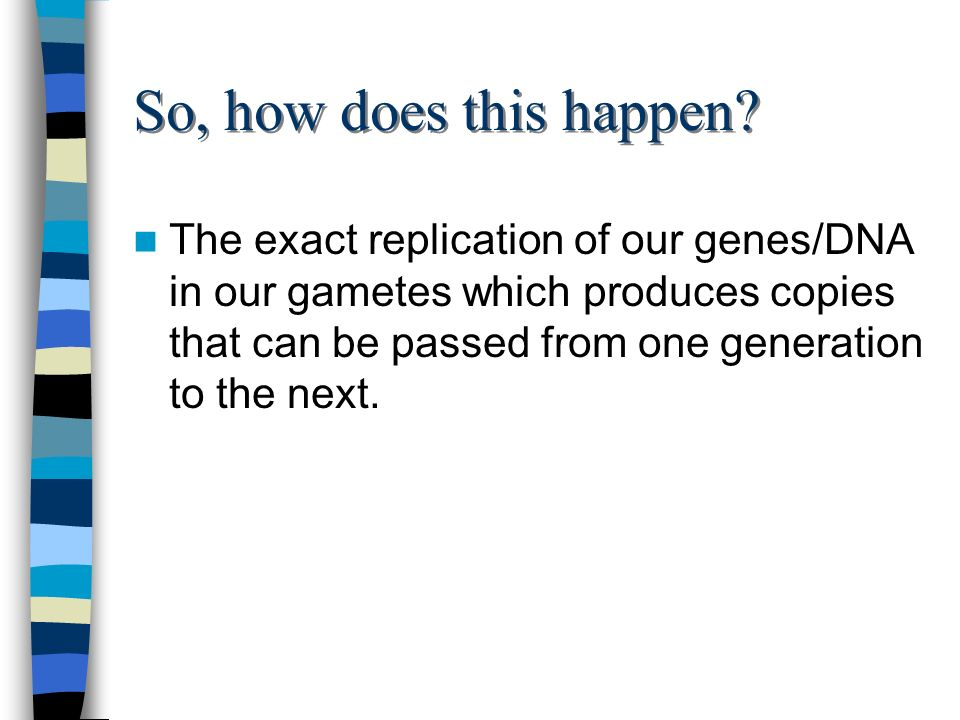 So, how does this happen? The exact replication of our genes/DNA in our gametes which produces copies that can be passed from one generation to the ne