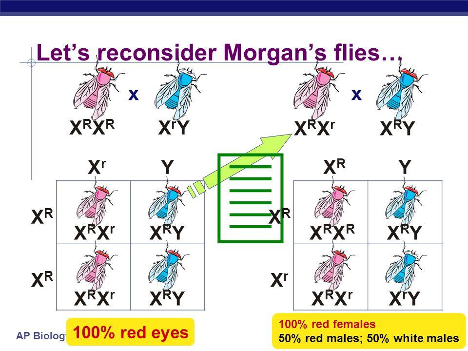 AP Biology XRXRXRXR XrYXrY Lets reconsider Morgans flies… x XrXr Y XRXR 100% red eyes XRXR XRXrXRXr XRYXRY XRYXRYXRXrXRXr x XRXrXRXr XRYXRY XRXR Y XRX