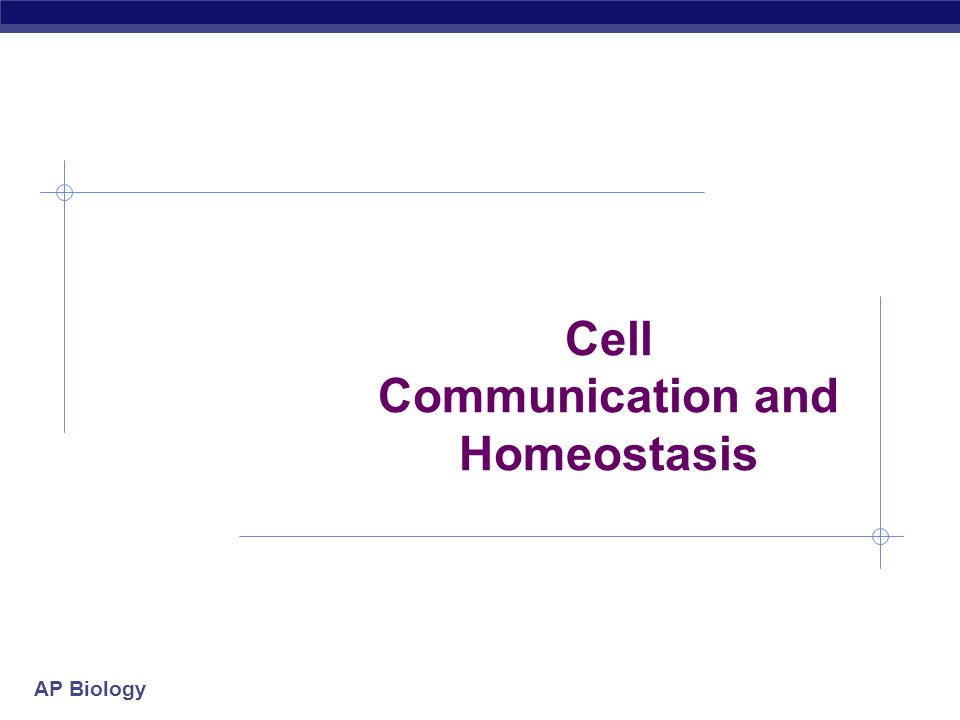 AP Biology Cell Communication and Homeostasis