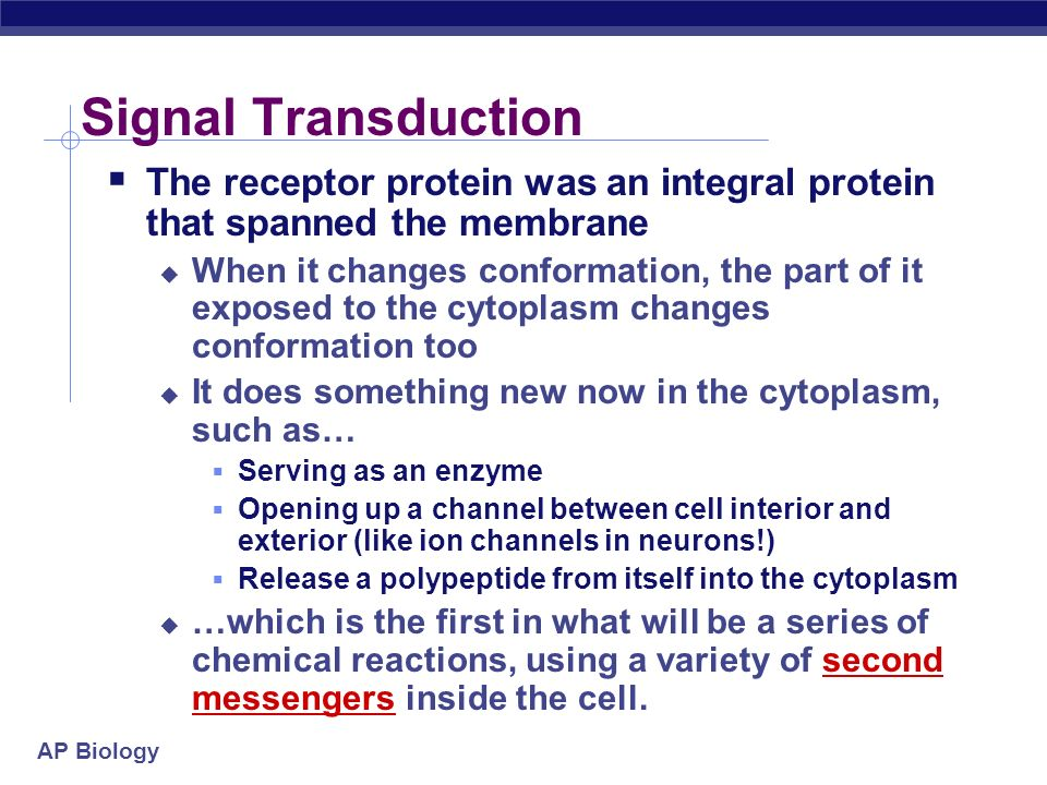 AP Biology Cell Signaling - Transduction Signal transduction is the process by which a signal is converted to a cellular response. The utility of sign