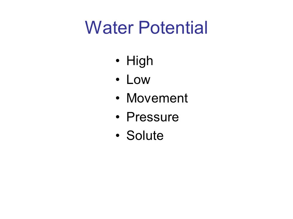 Water Potential High Low Movement Pressure Solute