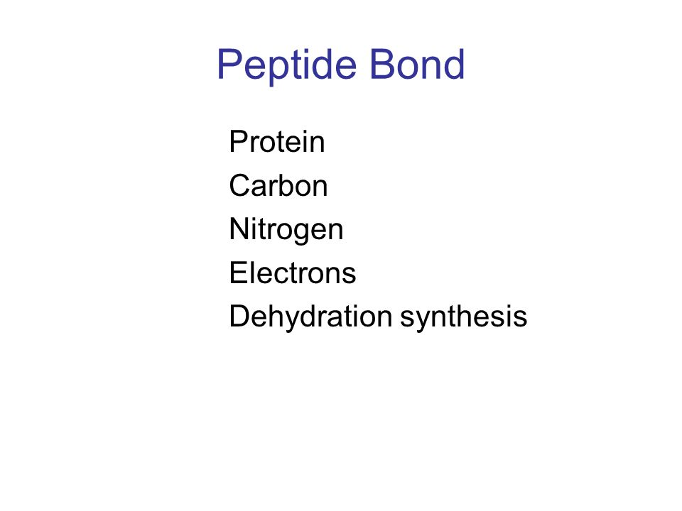 Peptide Bond Protein Carbon Nitrogen Electrons Dehydration synthesis