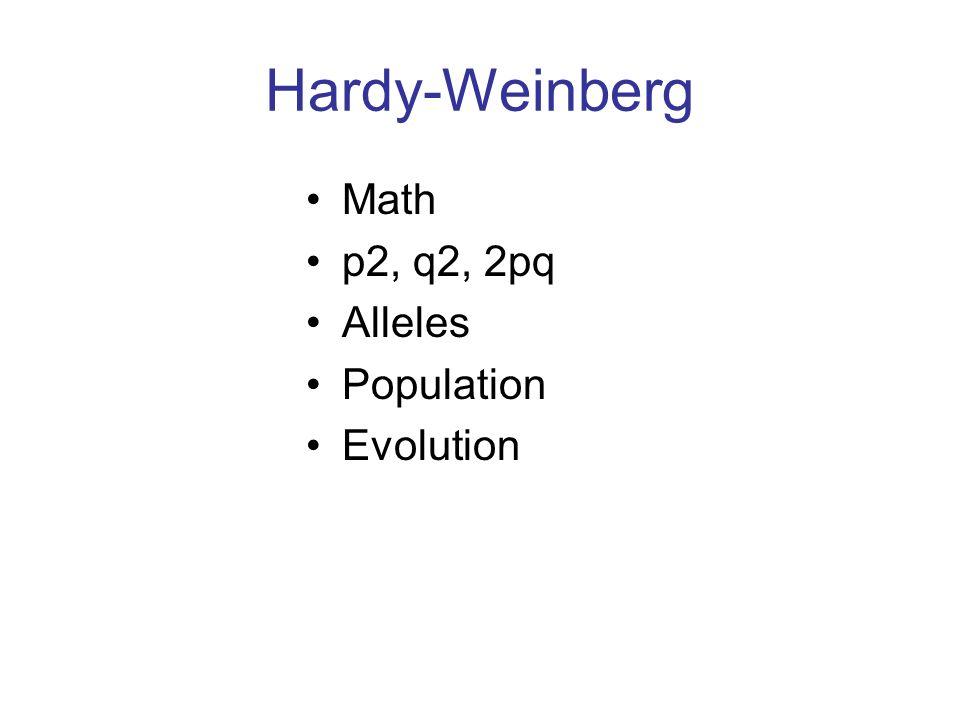 Hardy-Weinberg Math p2, q2, 2pq Alleles Population Evolution