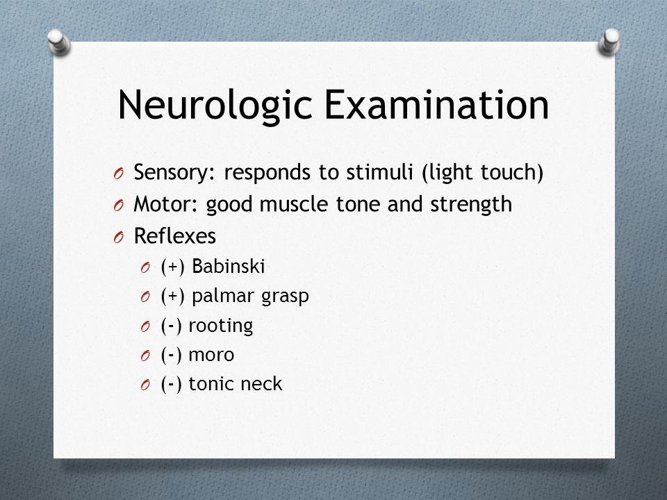 Neurologic Examination O Sensory: responds to stimuli (light touch) O Motor: good muscle tone and strength O Reflexes O (+) Babinski O (+) palmar gras